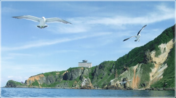 小樽海上観光船から撮影したホテルノイシュロス小樽とカモメ