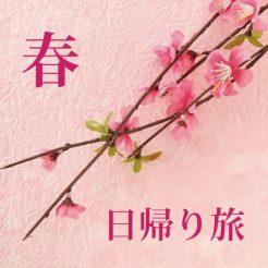 春のデイユースキャンペーン 3月がお得、日帰り旅にどうぞ!!
